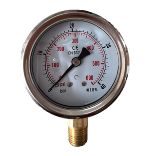 HF High quality center back stainless steel silicone oil liquid filled EN837-1 0-1000bar pressure gauge